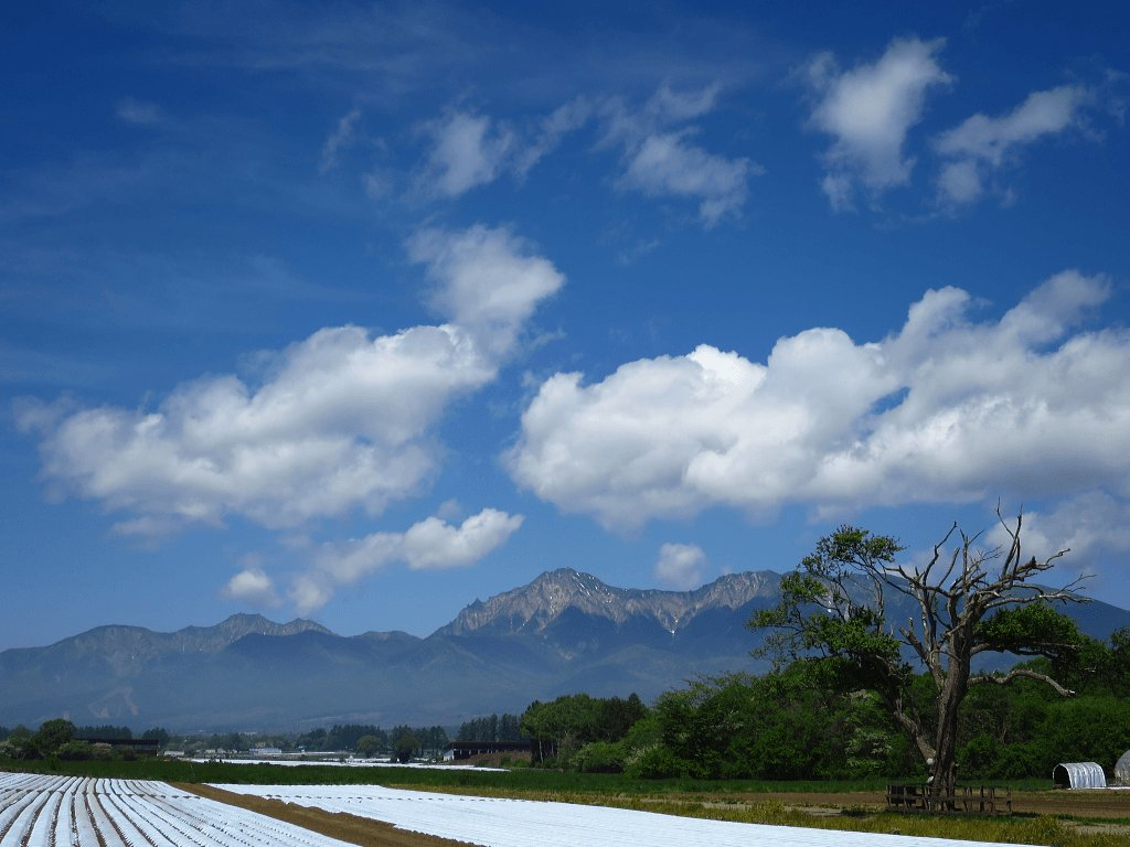 八ヶ岳野辺山高原は初夏の陽気