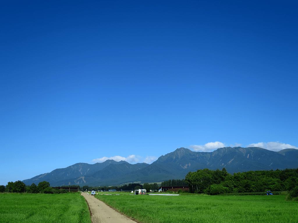 青い空と緑が映える季節